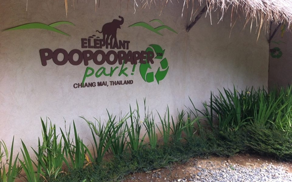 7 Attractions on Highway 107 by ECOCAR Car Rental Chiang Mai Elephant Poopoo Paper Park