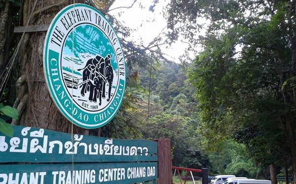 7 Attractions on Highway 107 by ECOCAR Car Rental Chiang Mai Chiang Dao Elephant Training Center