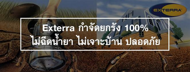 Exterra กำจัดยกรัง 100% ไม่ฉีดน้ำยา ไม่เจาะบ้าน ปลอดภัย