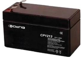 DeNA CP1213