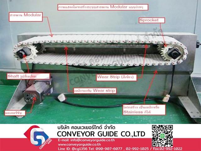 Modular Belt Conveyor มีส่วนประกอบอะไรบ้าง